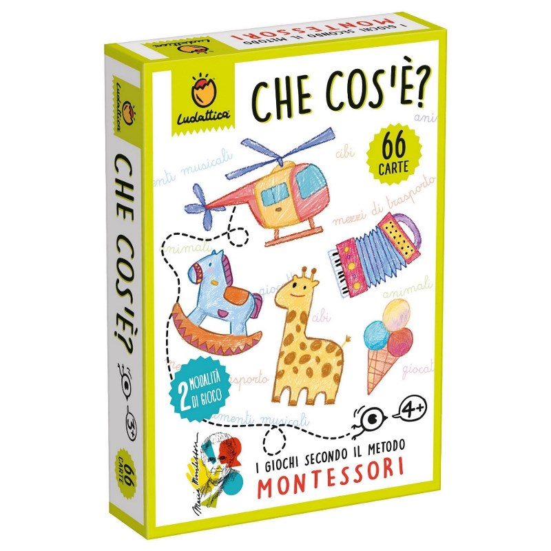 LUDATTICA CARTE MONTESSORI - CHE COS'E'? 82001